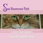 Cat's Eye Tarot : Sesi Wawancara dengan Kartu