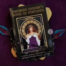 Madame Endora's Fortune Cards and Book 2