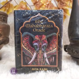 The Mahabharata Oracle
